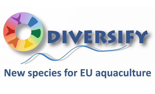 Diversify fish project